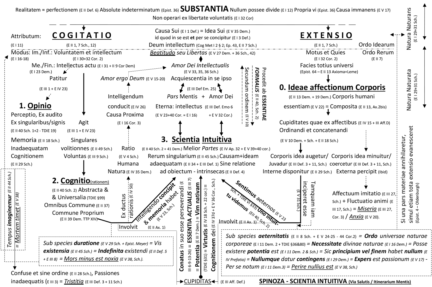 5. Spinoza – Scientia Intuitiva